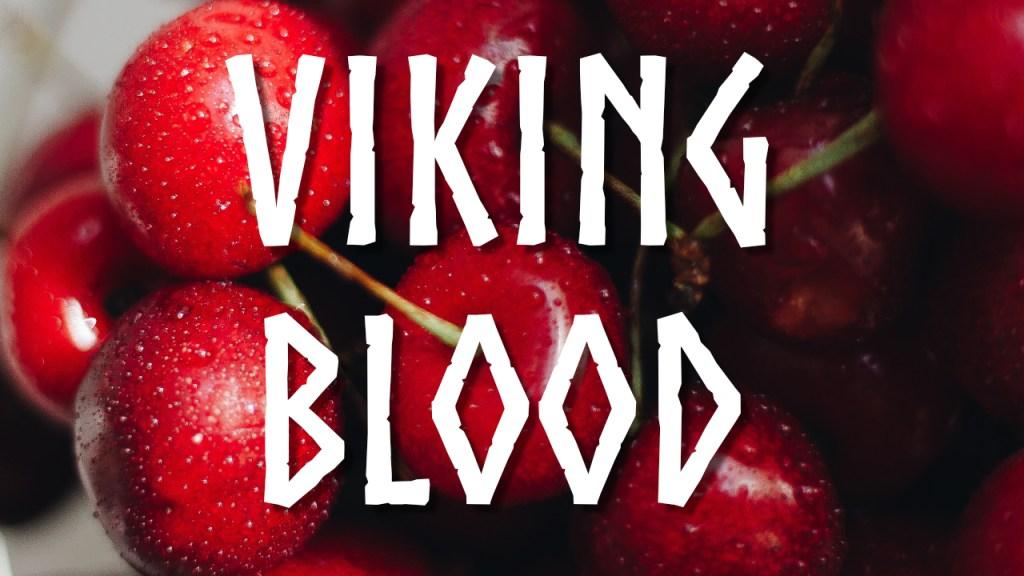 Viking Blood Mead