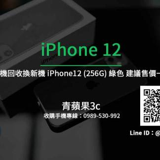 Apple iPhone 12 256G 綠色