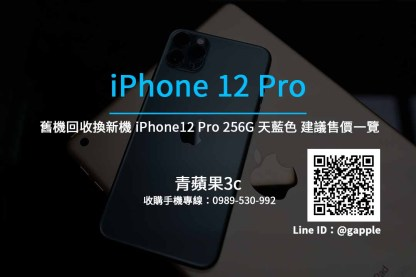 Apple iPhone 12 Pro 256G 太平洋藍
