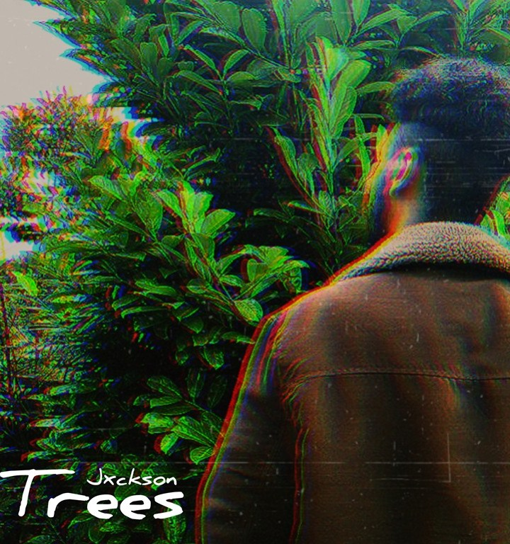 WALKING THE STREETS WITH CITYBEATS: ' Jxckson' spits the melodic truth with style and a warm dreamy production on his first entry 'Trees'