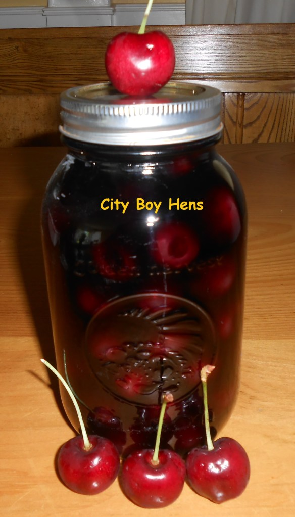 How To Make Drunken Cherries In Vodka