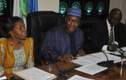 NSC seeks removal of physical trade barrier in African