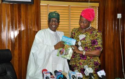 Information portal for Nigerians underway