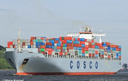 COSCO Mulls Acquisition Of Container Terminal