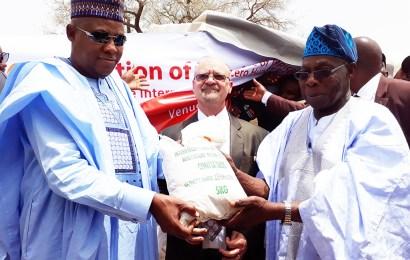 IITA donates 35,930 kilograms 'Seeds of Renaissance' to Borno