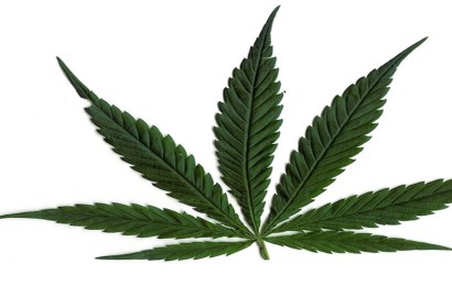Canada Legalises Use Of Marijuana