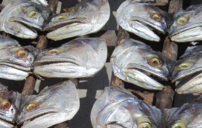 Ban On Fish Importation To Save Nigeria Over $1b