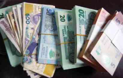 Plateau Generates N17b Internal Revenue In Nine Months