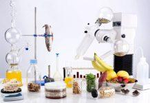 Τμήμα Επιστήμης Τροφίμων και Διατροφής του Ανθρώπου