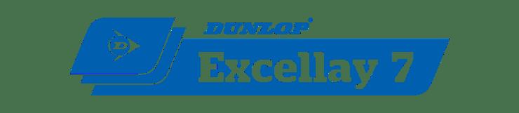 DLU_Commercial-CMYK-DLU-Blue-Excellay-7-01