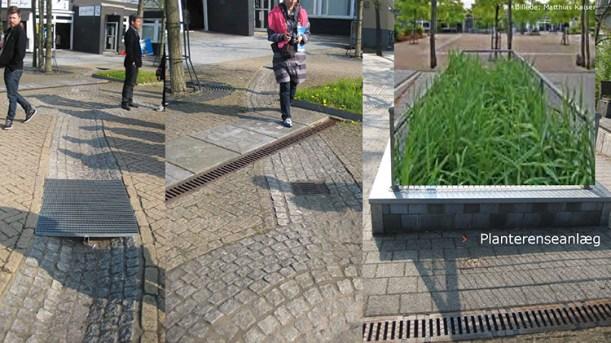 Planterenseanlæg i Scharnhorst-Ost, Dortmund – kvarterløftsprojekt