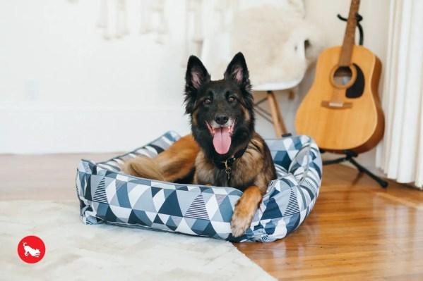 Mosaic Lounge Bed Tuxedo