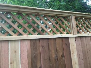 Cedar Fence w/Lattice