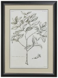 Tree Gray Framed Wall Art