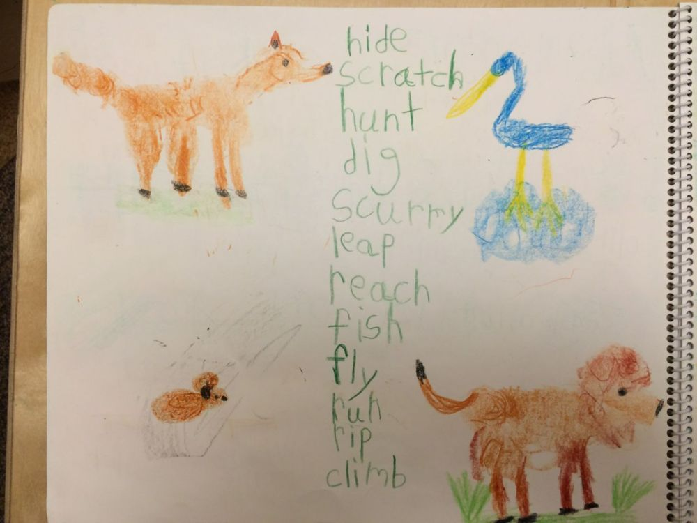 medium resolution of Fables in February – First and Second Grade   City Garden School