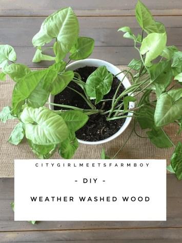 Weathered Washed Wood