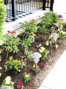 Planting a garden with Home Depot