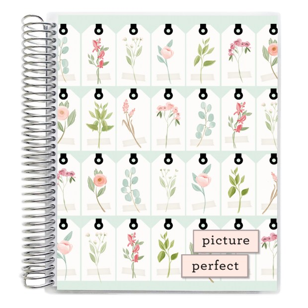 Picture Perfect CityGirl Spiral cover