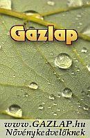 gazlap_v1