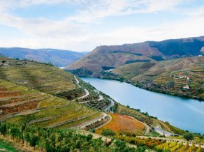 56c3b02f5464a8041fd7b22a_best-wine-portugal-cr-getty