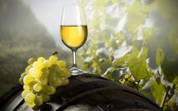 vinho-verde-fest-01