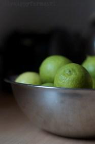 lime-marmalade-cityhippyfarmgirl