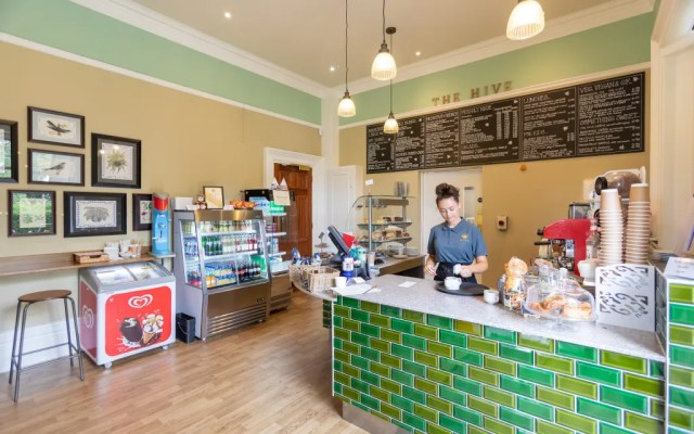 The Hive Cafe at Chelmsford Museum