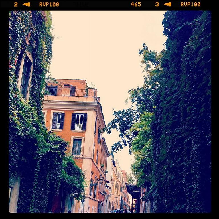Via Margutta, Rome (1/5)