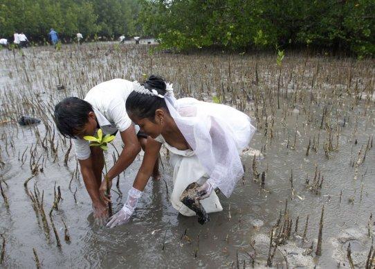 Poroke na nenavadnih krajih.