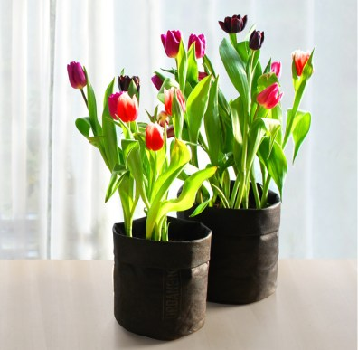 Product-FlowerBag-tulips