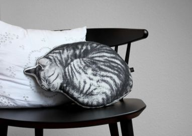 Mačkasta blazina.