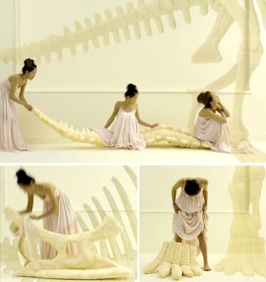 Blazina, ki je skelet dinozavra.