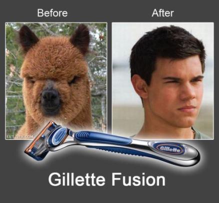 Prej in potem: Pred in po britju