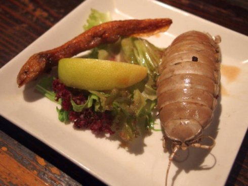 Salamander in gromozanska žužka vas bosta olajšala za 80 evrov.