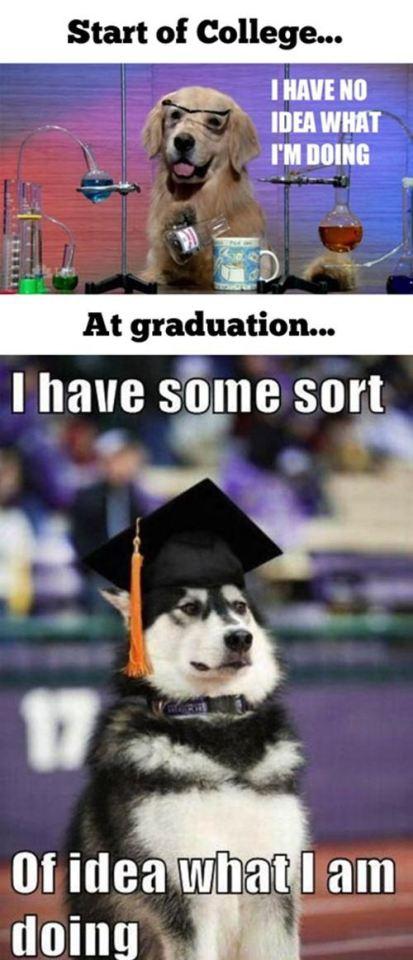 Študentsko življenje v sliki