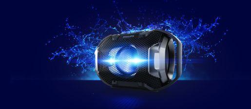 Brezžični prenosni zvočnik SB300B