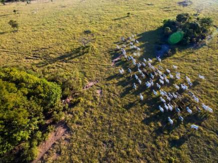 Najlepši posnetki z droni 2016