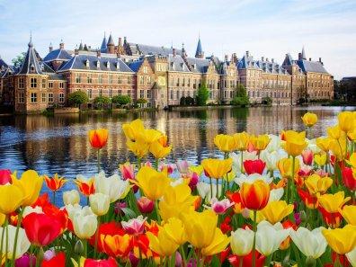 14. Hag, Nizozemska