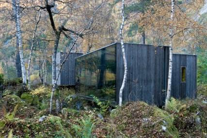 Hišo obdaja gozd