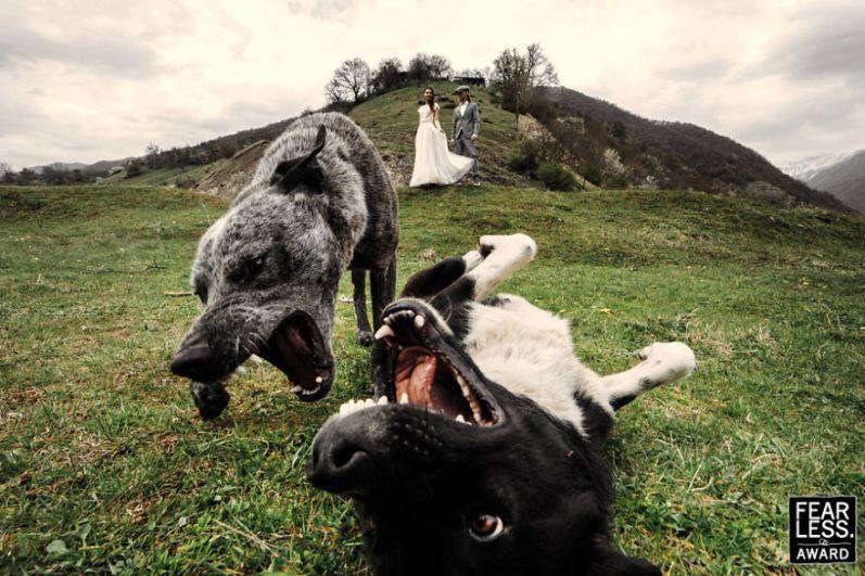 Najlepše poročne fotografije