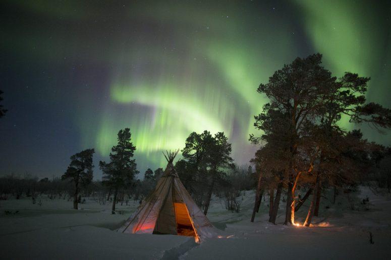 Sapmi Nature Camp: kampiranje med severnimi jeleni