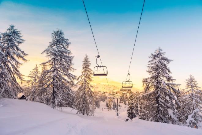 Vogel, Slovenija
