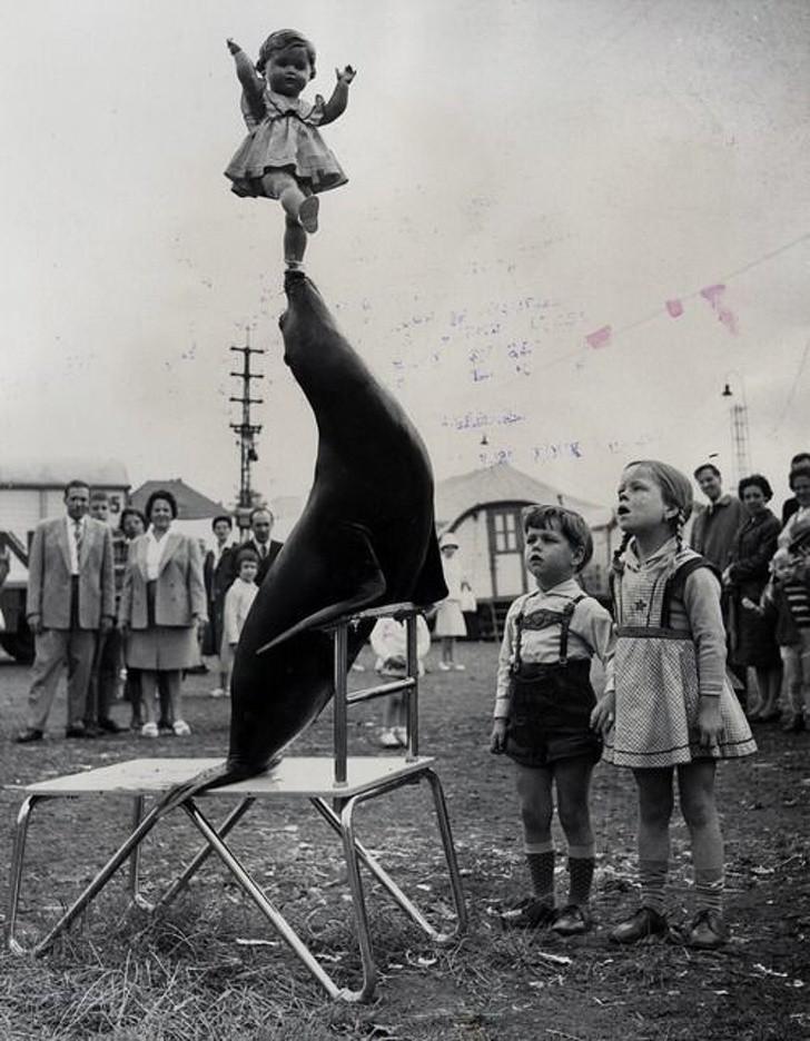 1933: Šov v cirkusu
