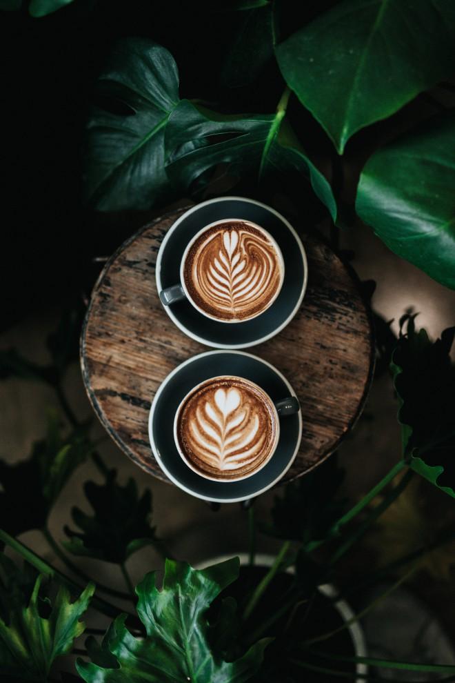 Pri pripravi in uživanju kave je voda ključnega pomena.