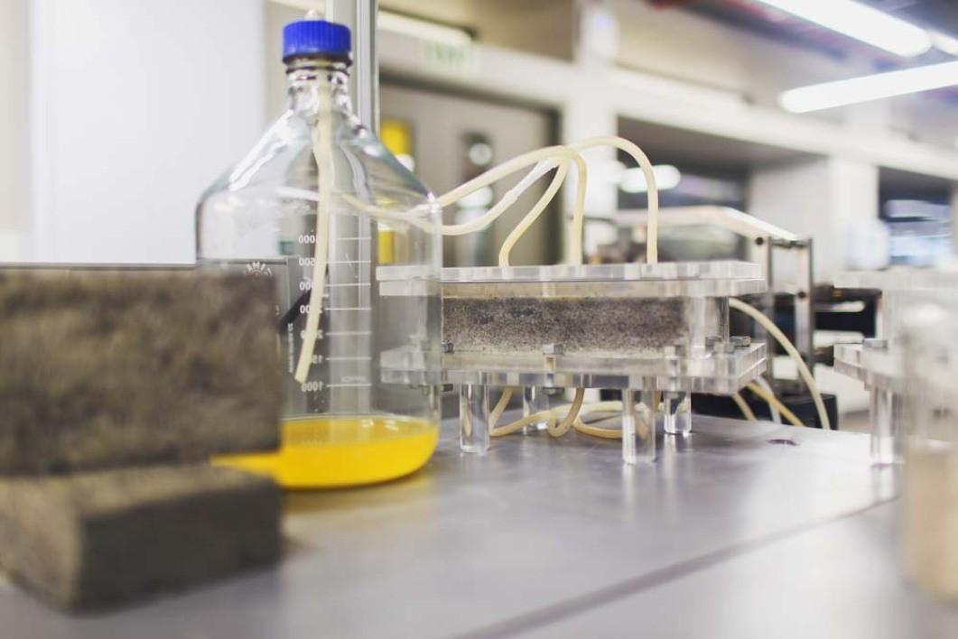 Bakterije, pesek in urin tvorijo odlično kombinacijo.