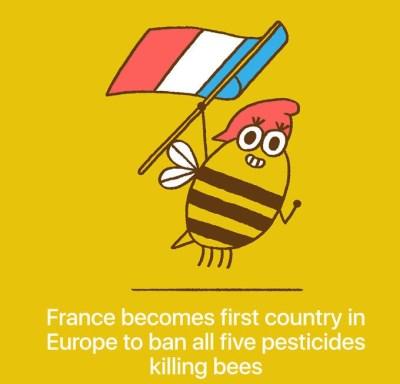 Francija je prepovedala pet pesticidov, ki ubijajo čebele.