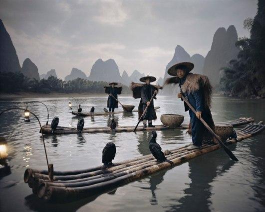 Kormorani Yang Shuo, Kitajska