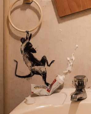 Tako je umetnik Banksy preobrazil domačo kopalnico.