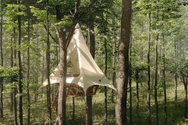 Foto: O2 Treehouse