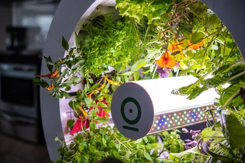 ogarden_smart_gardening_system_16